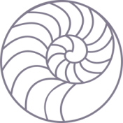 cropped-perlemor-icon2.png